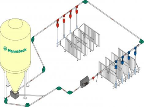 Auger feeding systems